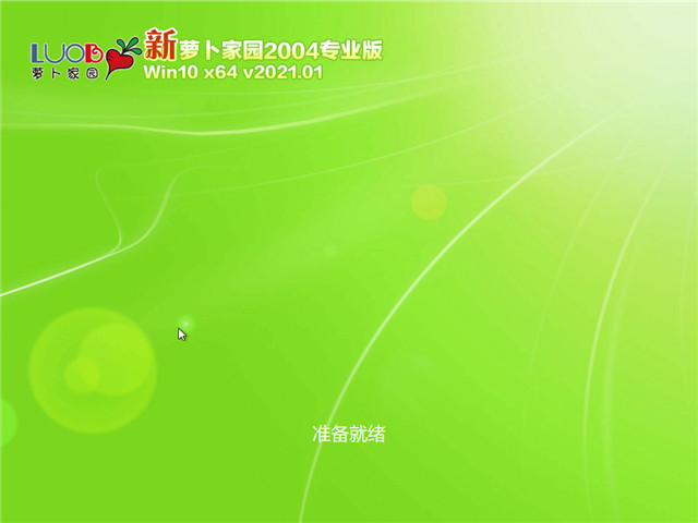 萝卜家园 Win10 64位专业版(2004) v2021.01